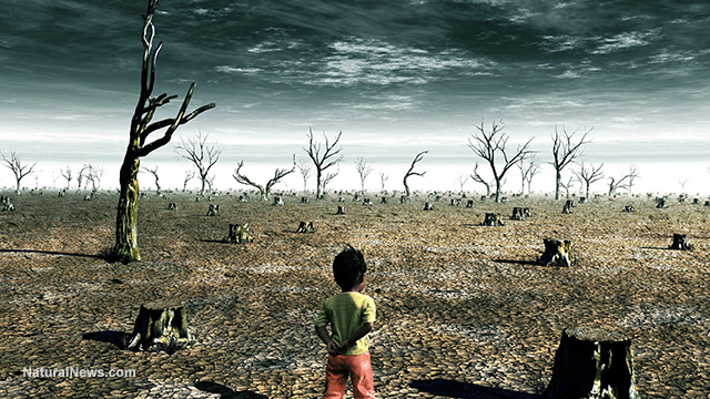 Child-Walking-Apocalypse-War-Torn-Land.jpg